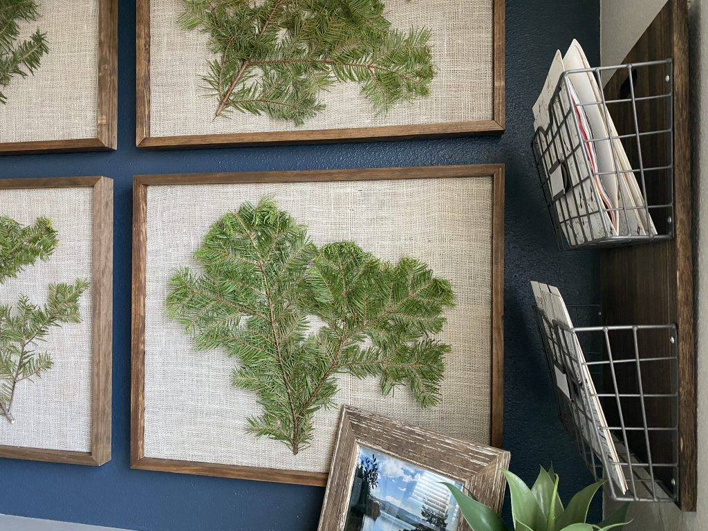 Botanical pine branches and file holders